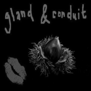 051 0 Gland_&_Conduit